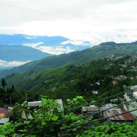 The rolling mountains of Darjeeling, India.